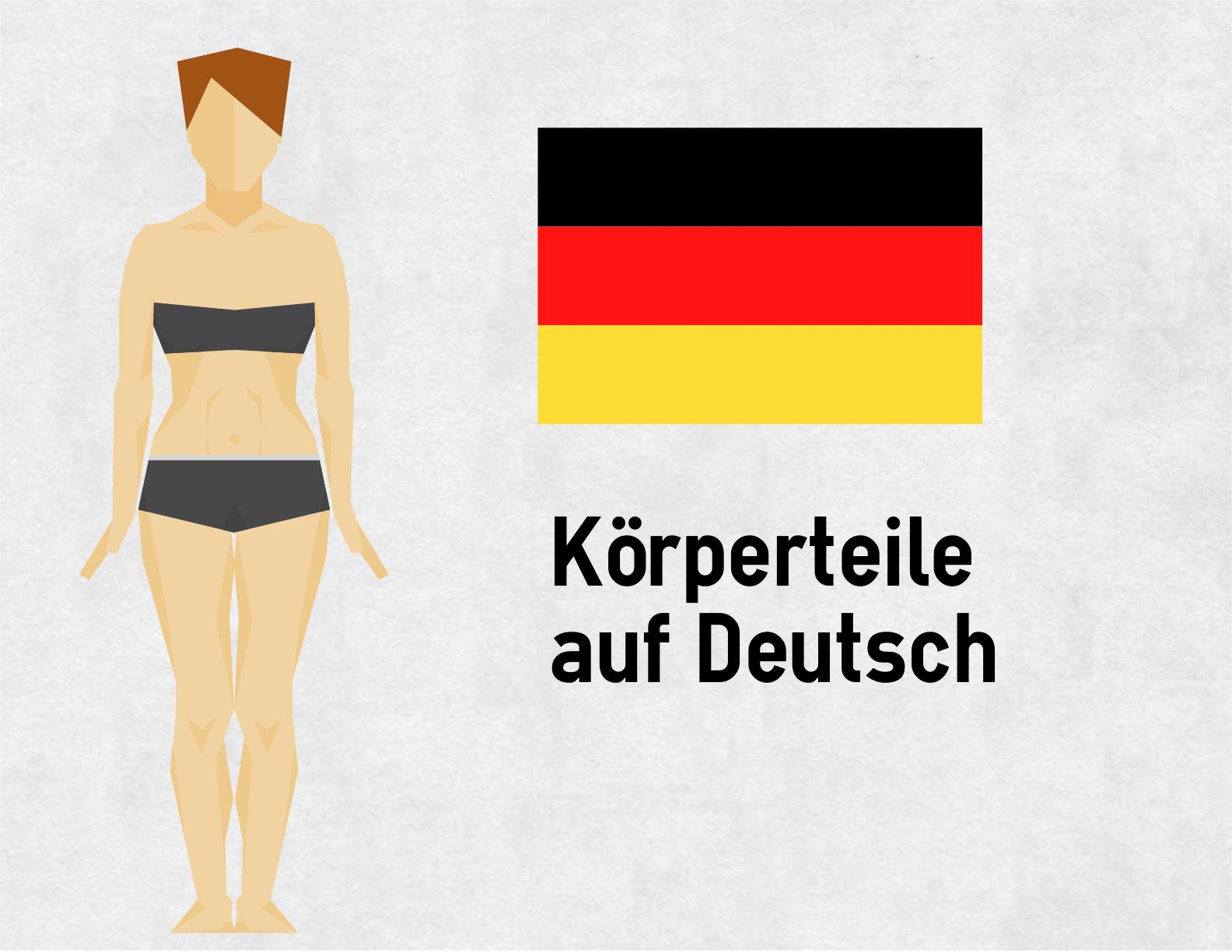 Körperteile auf Deutsch